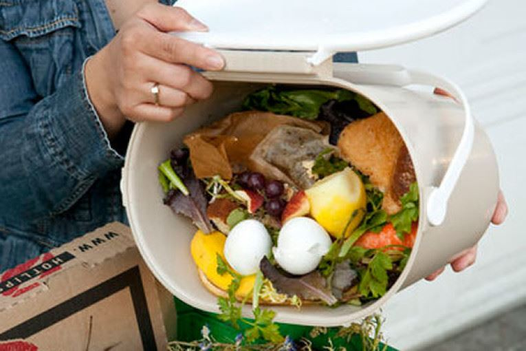 Image of organic/compost waste